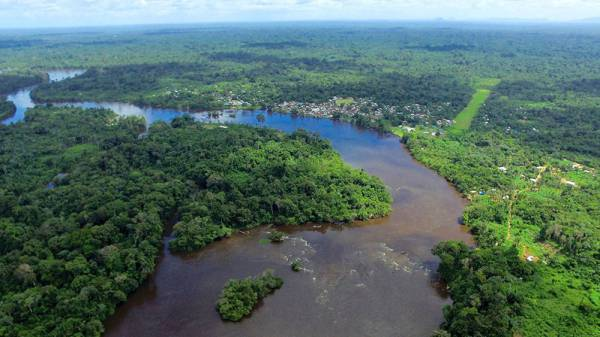 All Suriname Tours